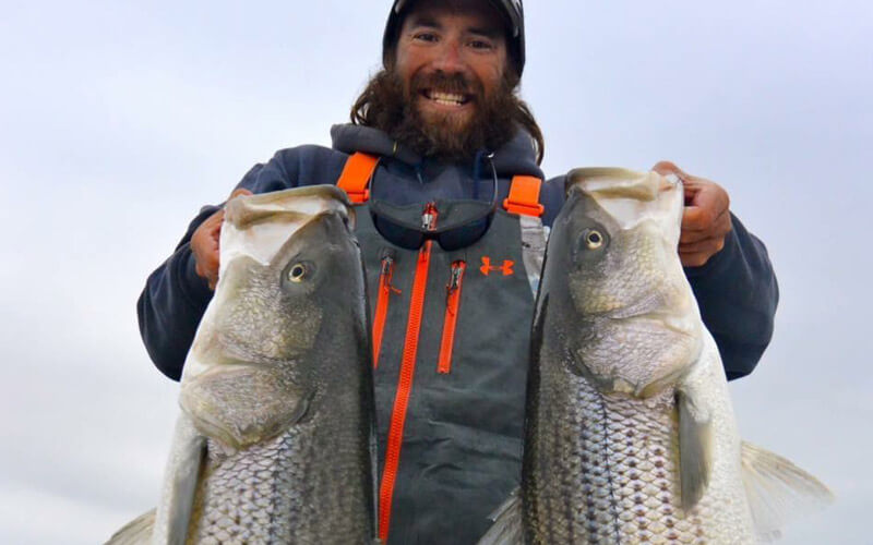 An image of Captain Tyler Nonn with impressive Chesapeake Bay Stripers