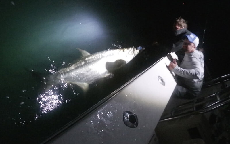Nighttime tarpon fishing in the Florida Keys with Tidewater Charters.
